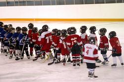 Ahockey4