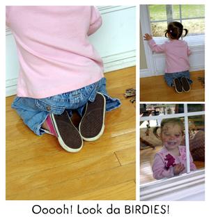 Birdie_watching_1
